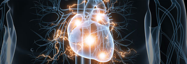 Irregular Heart Beat Causes Clearwater, Hybrid Ablation Studies in Tampa, Cause of Heart Palpitations St. Petersburg
